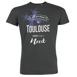 All you need is Toulouse